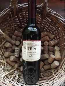 Boris-wine Nitria