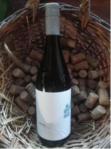 VinoVin Čierna ríbezľa
