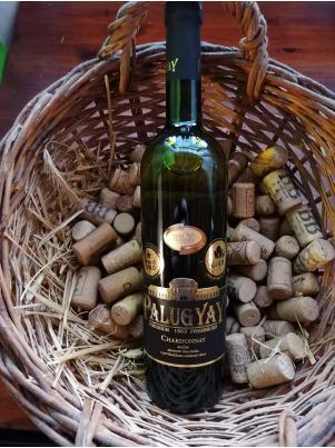 Villa víno Rača Chardonnay